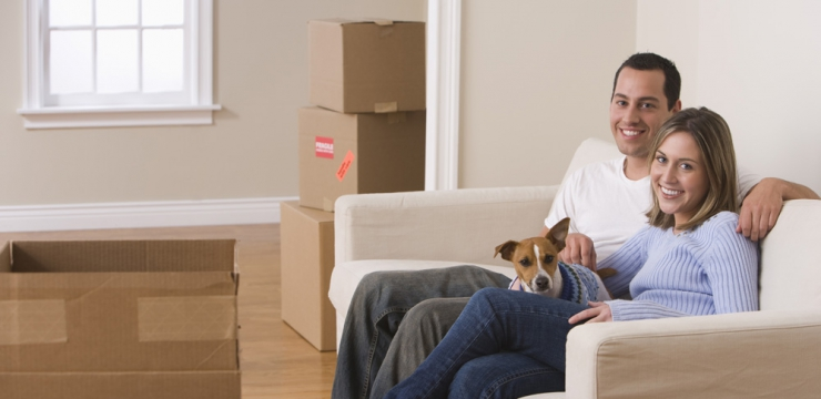 Your Guide to Packing and Moving with Pets